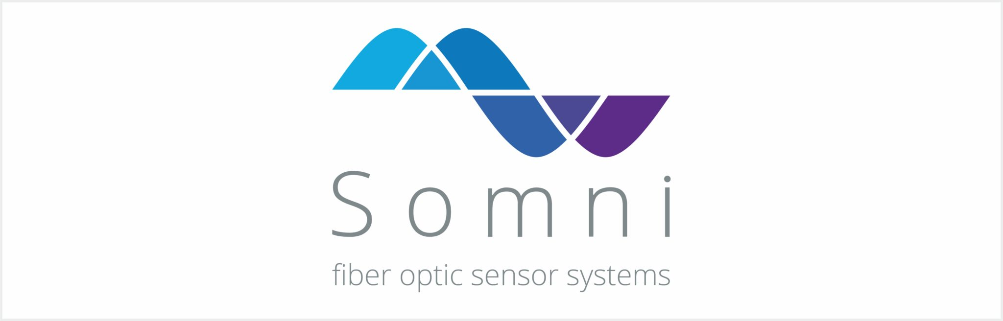 Logo Somni Solutions_web